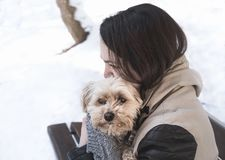 Girl holding a dog in her arms royalty free stock photography