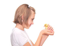 Girl holding a duckling royalty free stock images