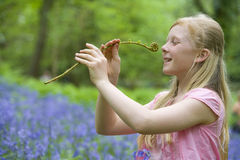 Girl holding fiddlehead fern in field of bluebell flowers Stock Photography