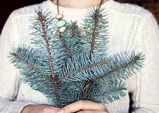 Girl is holding a fir branch Stock Image
