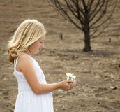 Girl holding flower in baren landscape Royalty Free Stock Images