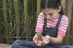 Girl Holding Frog Stock Photos