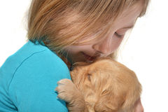 Girl holding a golden retriever pup Royalty Free Stock Photo