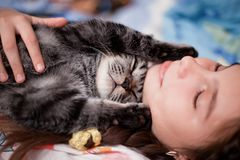 Girl holding gray cat. Young girl holding gray and black cat while lying down Royalty Free Stock Photography