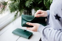 Girl holding a green money wallet. stock images