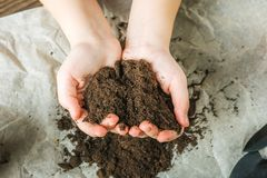 The girl is holding the ground. The girl will transplant potted plants at home. Earth, seedling, Spring, hands, the concept of pro. Tecting nature and ecology stock photos