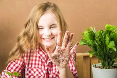The girl is holding the ground. The girl will transplant potted plants at home. Earth, seedling, Spring, hands, the concept of pro. Tecting nature and ecology stock image