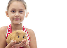 girl holding a guinea pig Royalty Free Stock Image