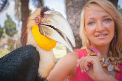 Girl holding on a hand beautiful toucan Stock Photography