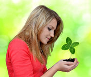 Girl holding in hand clover quarterfoil Stock Photos