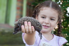 Girl holding in hand hedgehog Stock Images