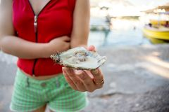 Girl holding in hands the open oyster stock photos