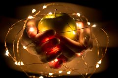 Girl holding in hands green apple with garland lights Stock Images