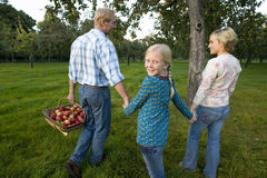 Girl (11-13) holding hands with parents, father with basket of apples, smiling, portrait stock photos