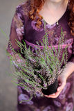 Girl holding heather flowers in her hands Stock Image
