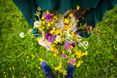 Girl holding in her hand a beautiful bouquet with multi-colored wild flowers. Amazing bunch of wilf flowers in the nature royalty free stock image