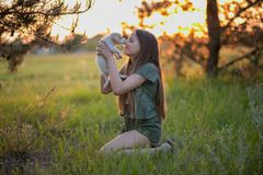 Girl holding a labrador puppy and smiling. At sunset on a forest glade in the spring. Friendship, happiness stock image