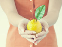 Girl holding lemon Stock Images
