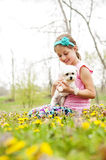 Girl holding Maltese dog Spring flowers. Young pretty girl holds Maltese dog in Spring wildflower meadow Royalty Free Stock Photos