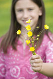 Girl (7-9) holding out wild flowers (differential focus) Stock Photography