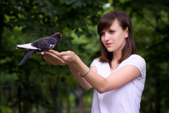Girl holding a pigeon Stock Photos