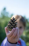Girl holding pine cone in the fall Stock Photography