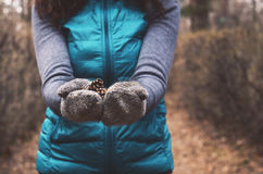 Girl holding pine tree cones in her hands in autumn forest Stock Photo