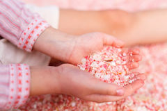 Girl holding pink shells Stock Photos