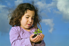 Girl holding plant. Little girl holding plant against blue sky with clouds Stock Photography