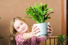 A girl is holding a pot with a flower. The girl in a plaid shirt in the hands of the ground with Schlumberger. Transplanting potte royalty free stock image