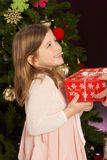 Girl Holding Present In Front Of Christmas Tree Royalty Free Stock Image