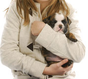 Girl holding puppy Stock Photography