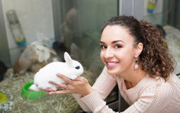 Girl holding the rabbit at pet shop Royalty Free Stock Image