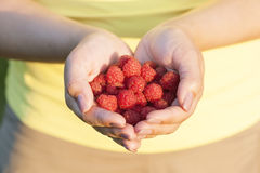 A girl is holding a raspberry in her hands, closeup. A girl is holding a raspberry in her hands, a treat Royalty Free Stock Image