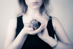 The girl is holding a rat in her hands. The rat looks at the camera Stock Images