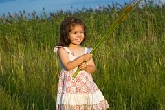 Girl holding reeds Stock Photos