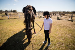Girl holding the reins of a horse in the ranch. On a sunny day Royalty Free Stock Photography