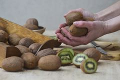 A girl is holding ripe kiwi. Demonstration of fruit. royalty free stock images