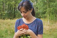Girl holding Rowan. Girl holds in the hands of Rowan Stock Images