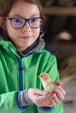 Girl holding small chick stock photography
