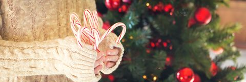 Girl holding stack of peppermint candy canes. Christmas holiday. Concept. Holiday background. Horizontal, banner format Royalty Free Stock Photos