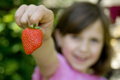 Girl holding a strawberry. Young girl holding fresh strawberry in hand, her face out of focus Royalty Free Stock Photography