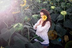 Young girl with sunflowers in the bright sun stock image