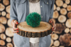 Girl holding a tree ring. Wood background vintage retro Royalty Free Stock Images