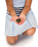 Girl holding a turtle Royalty Free Stock Image