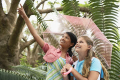 Girl Holding Umbrella With Friend Pointing In Forest Stock Photos