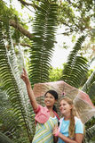 Girl Holding Umbrella With Friend Pointing In Forest Stock Photo