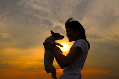 Girl holding up jack russell. Asian girl holding up jack russell at sunset Stock Photo