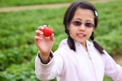 Girl Holding Up a Strawberry royalty free stock photo