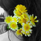 A girl Holding a yellow bouquet Stock Images